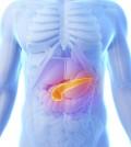 Pancreas-120x134