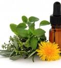 Terapia-floral-2_2jpg-120x134